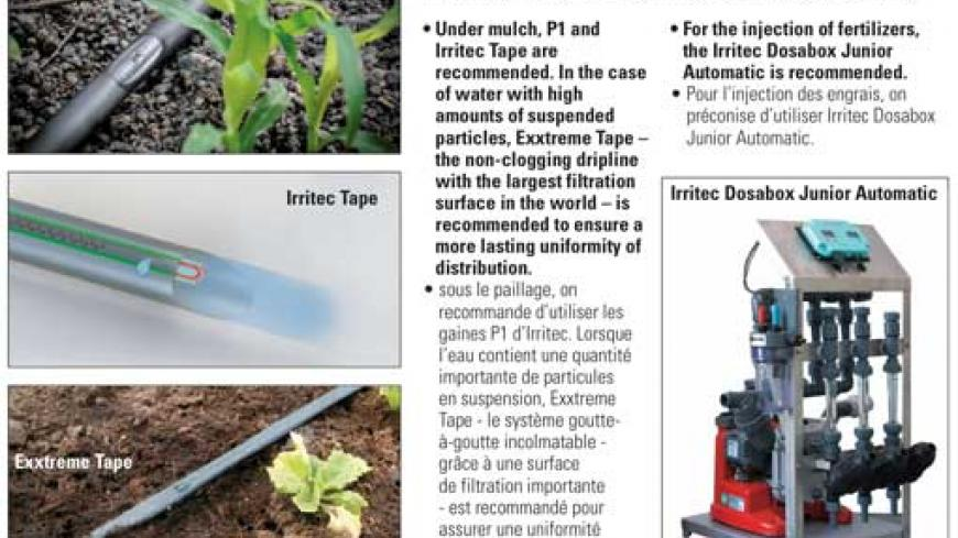 Products recommended for the irrigation of berries grown in a soilless medium