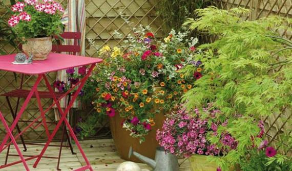 Choose your holiday watering system for balconies and terraces