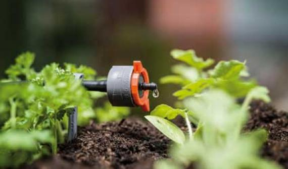 Zooming in on drip irrigation