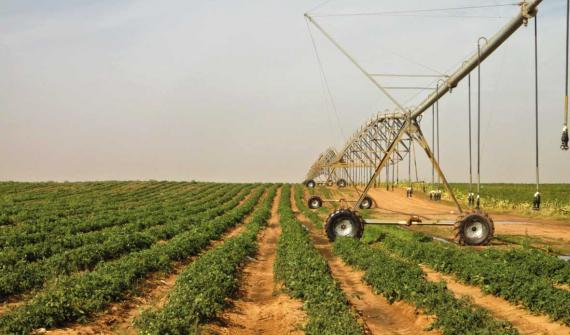 Agriculture has become a priority for Senegal