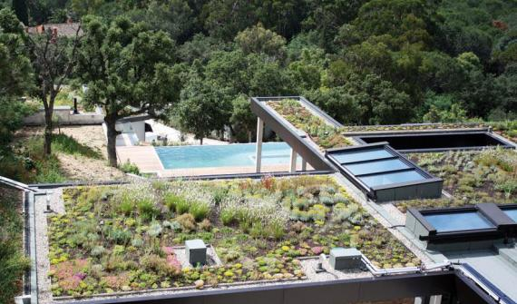 A garden on… the roof